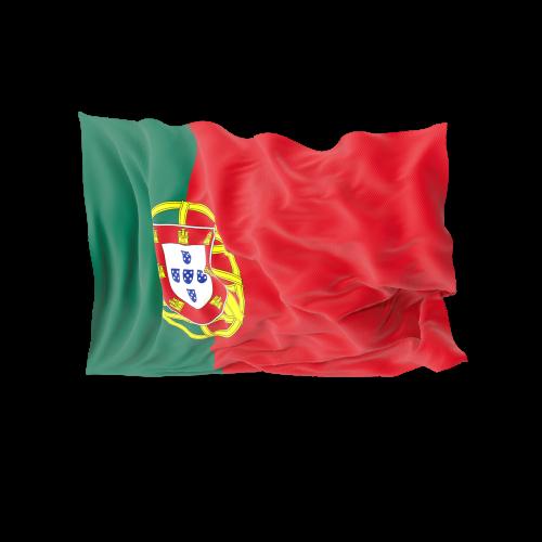 traductor jurado español portugués